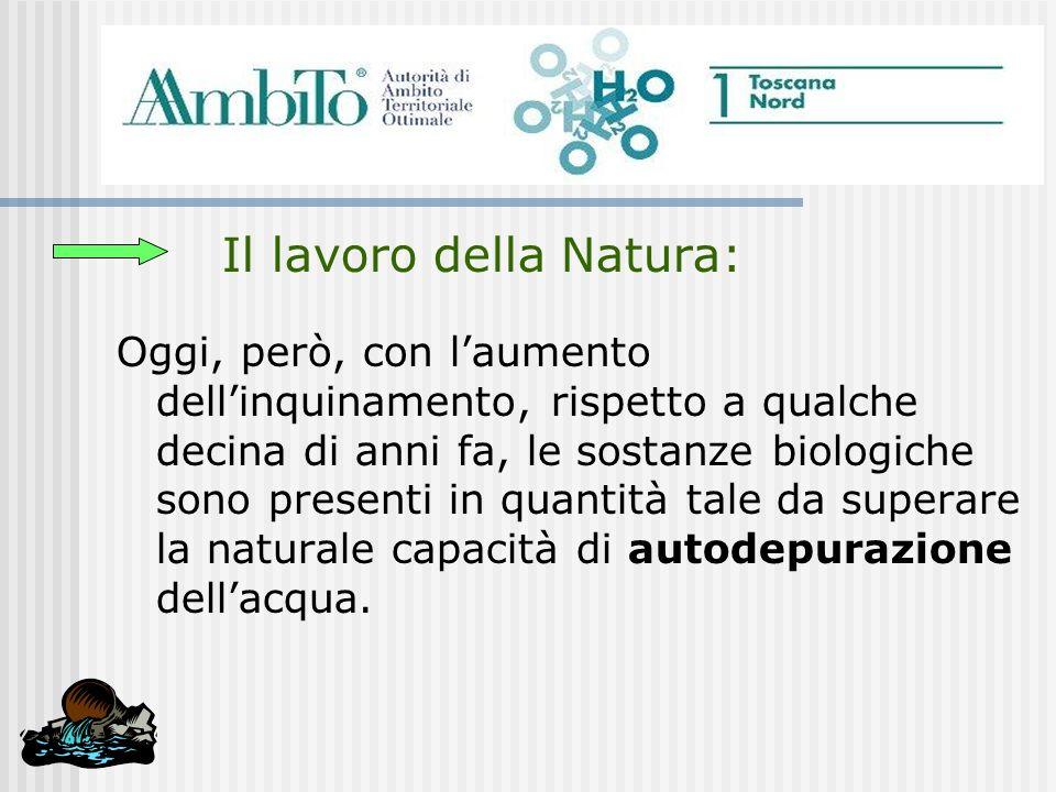 Il lavoro della Natura: