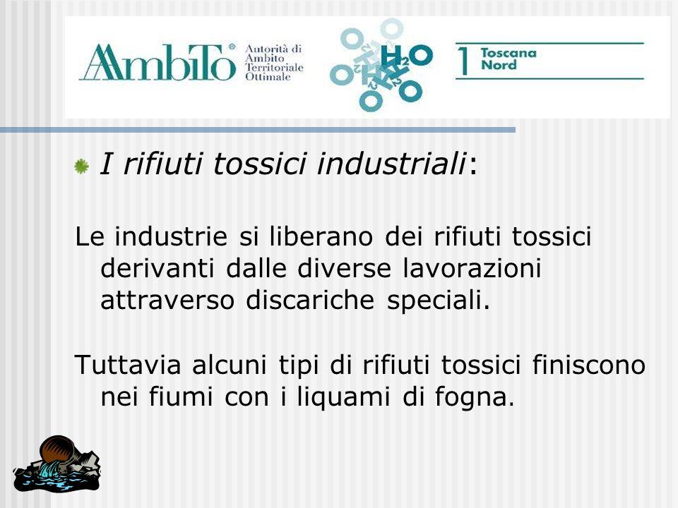 I rifiuti tossici industriali: