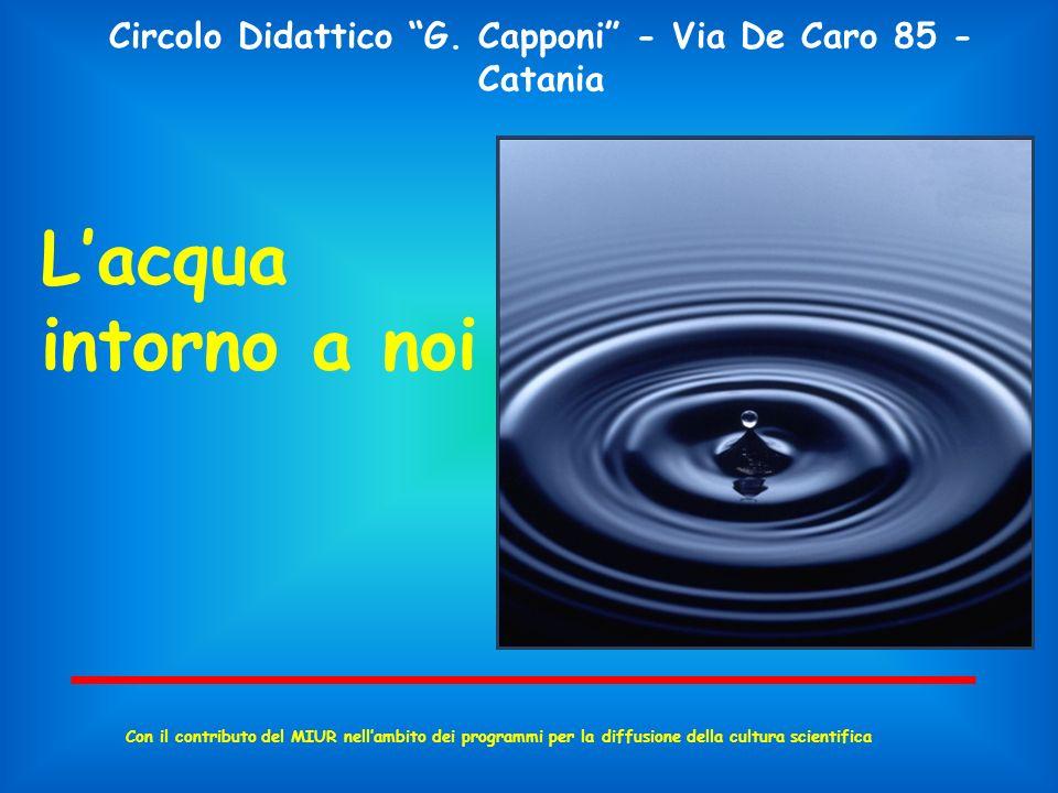 Circolo Didattico G. Capponi - Via De Caro 85 - Catania