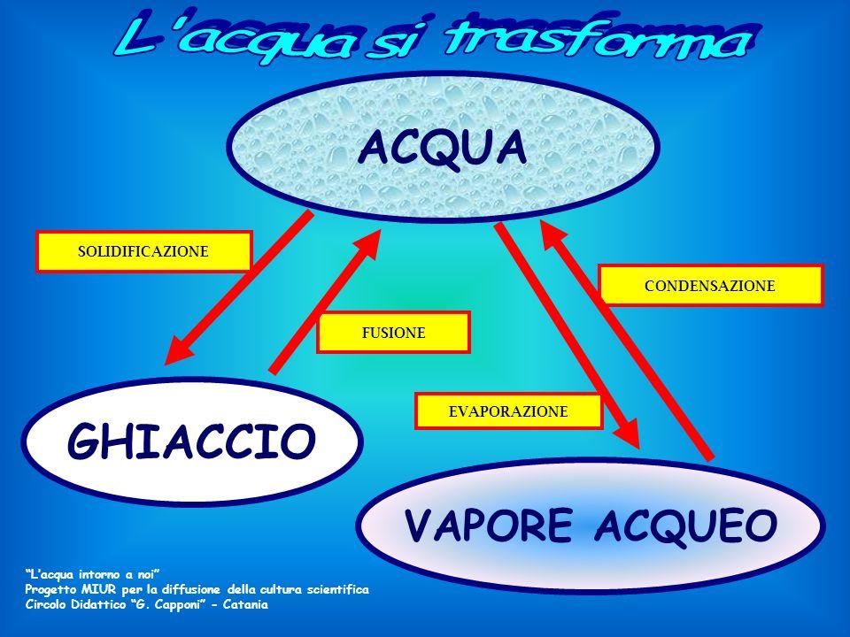 ACQUA GHIACCIO VAPORE ACQUEO L acqua si trasforma SOLIDIFICAZIONE