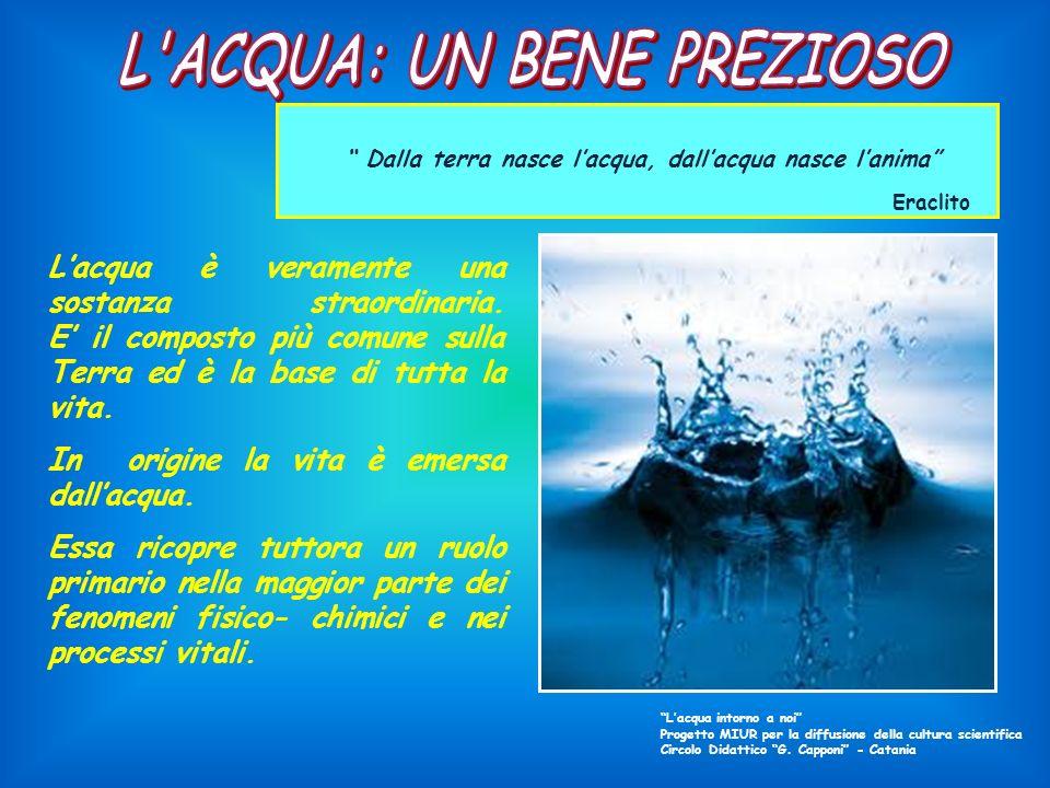 In origine la vita è emersa dall'acqua.