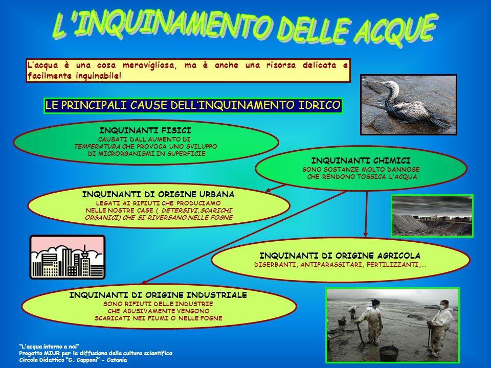 LE PRINCIPALI CAUSE DELL'INQUINAMENTO IDRICO