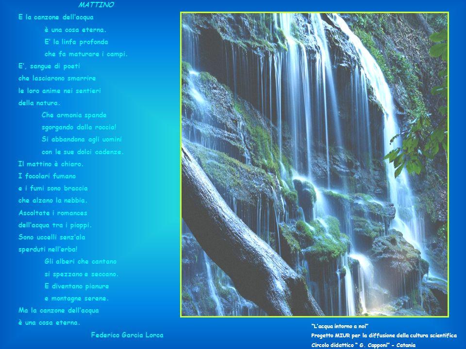 E la canzone dell'acqua è una cosa eterna. E' la linfa profonda