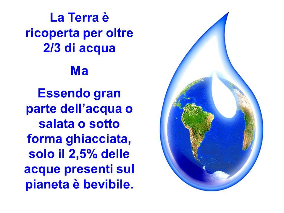 La Terra è ricoperta per oltre 2/3 di acqua
