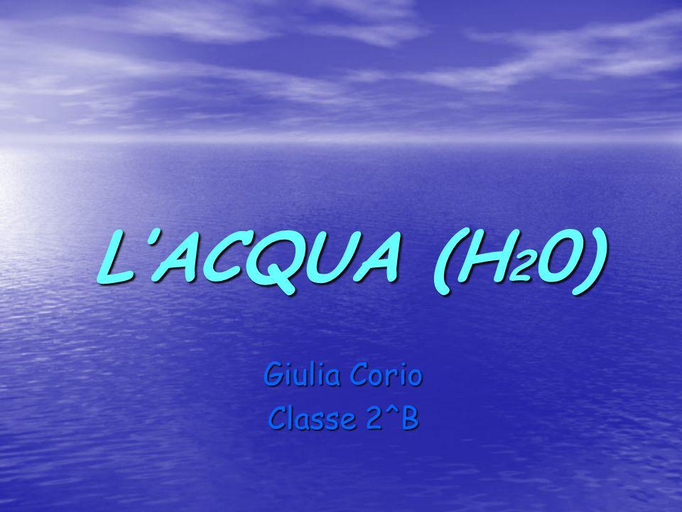L'ACQUA (H20) Giulia Corio Classe 2^B