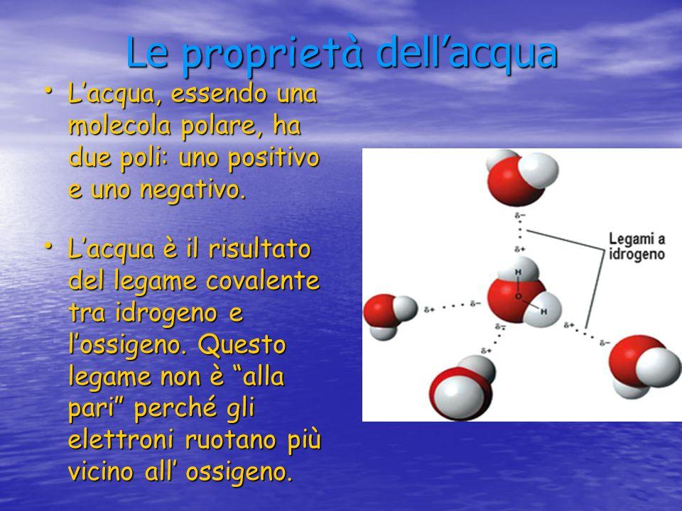 Le proprietà dell'acqua