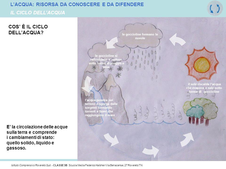 L'ACQUA: RISORSA DA CONOSCERE E DA DIFENDERE