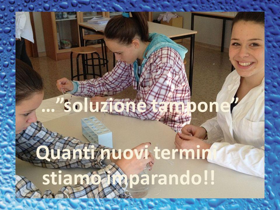 … soluzione tampone Quanti nuovi termini stiamo imparando!!
