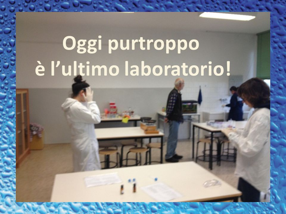 è l'ultimo laboratorio!