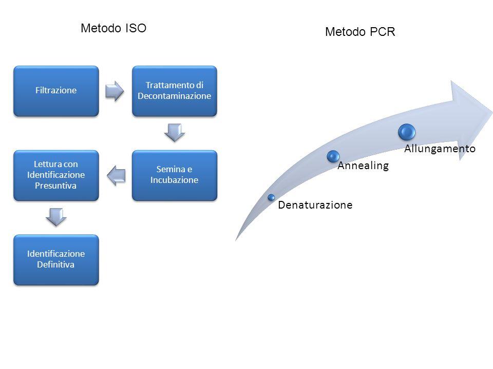 Metodo ISO Metodo PCR Denaturazione Annealing Allungamento Filtrazione