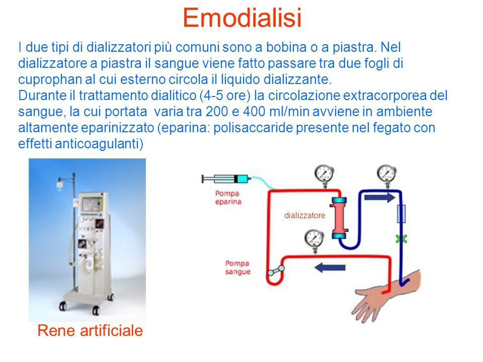 Emodialisi Rene artificiale