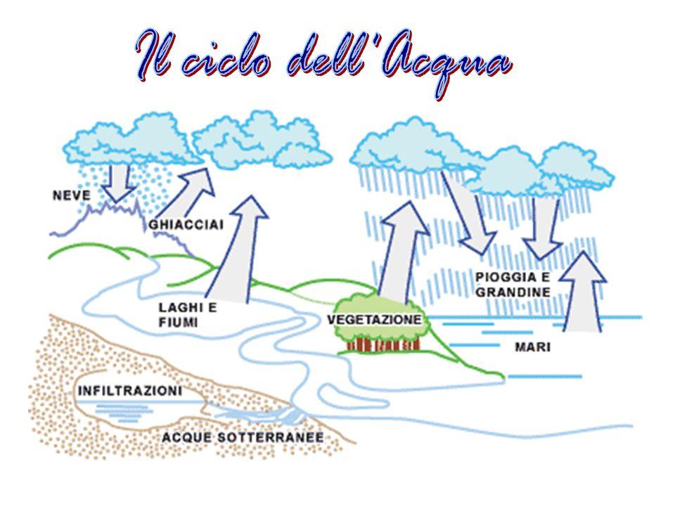 Il ciclo dell Acqua