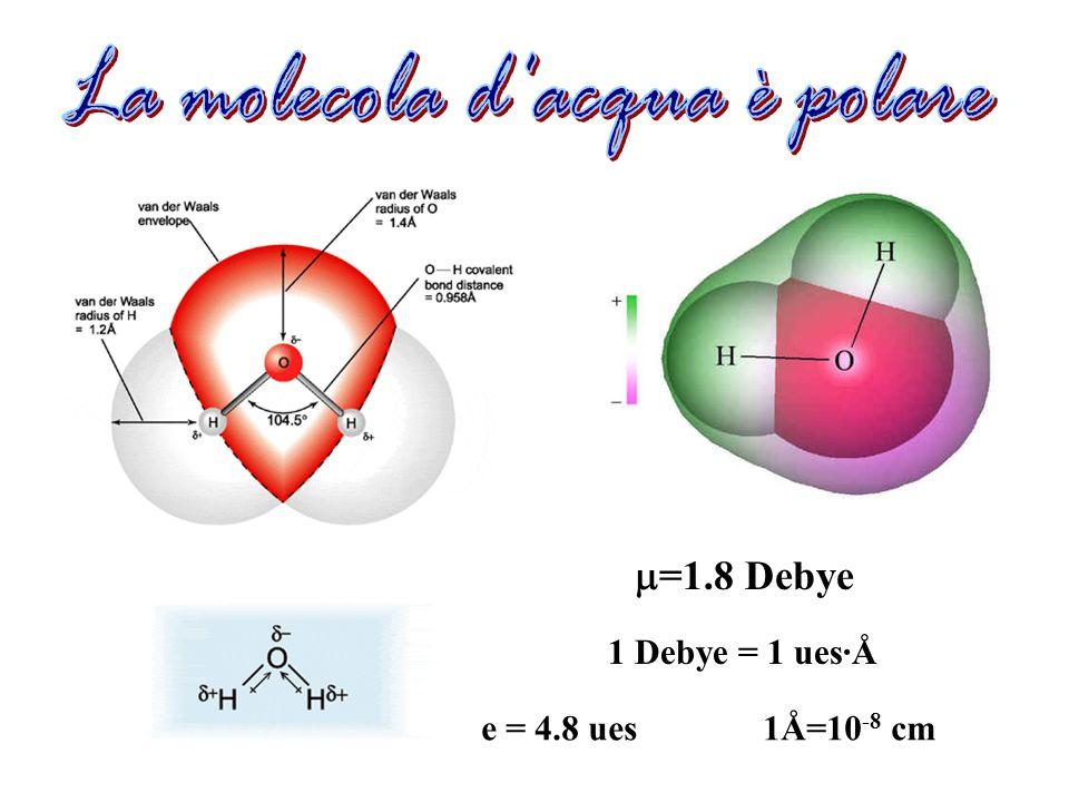 La molecola d acqua è polare