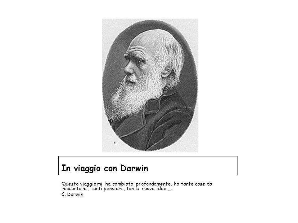 In viaggio con Darwin Questo viaggio mi ha cambiato profondamente, ho tante cose da raccontare , tanti pensieri , tante nuove idee …..