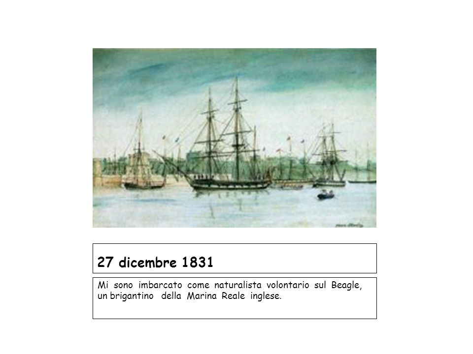 27 dicembre 1831 Mi sono imbarcato come naturalista volontario sul Beagle, un brigantino della Marina Reale inglese.