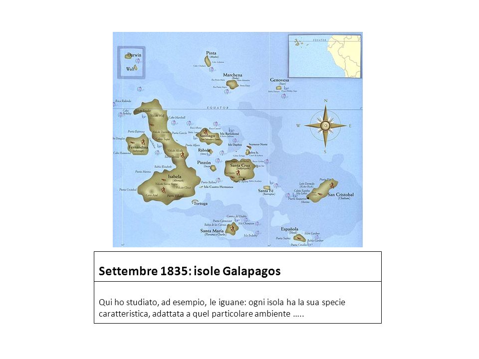 Settembre 1835: isole Galapagos
