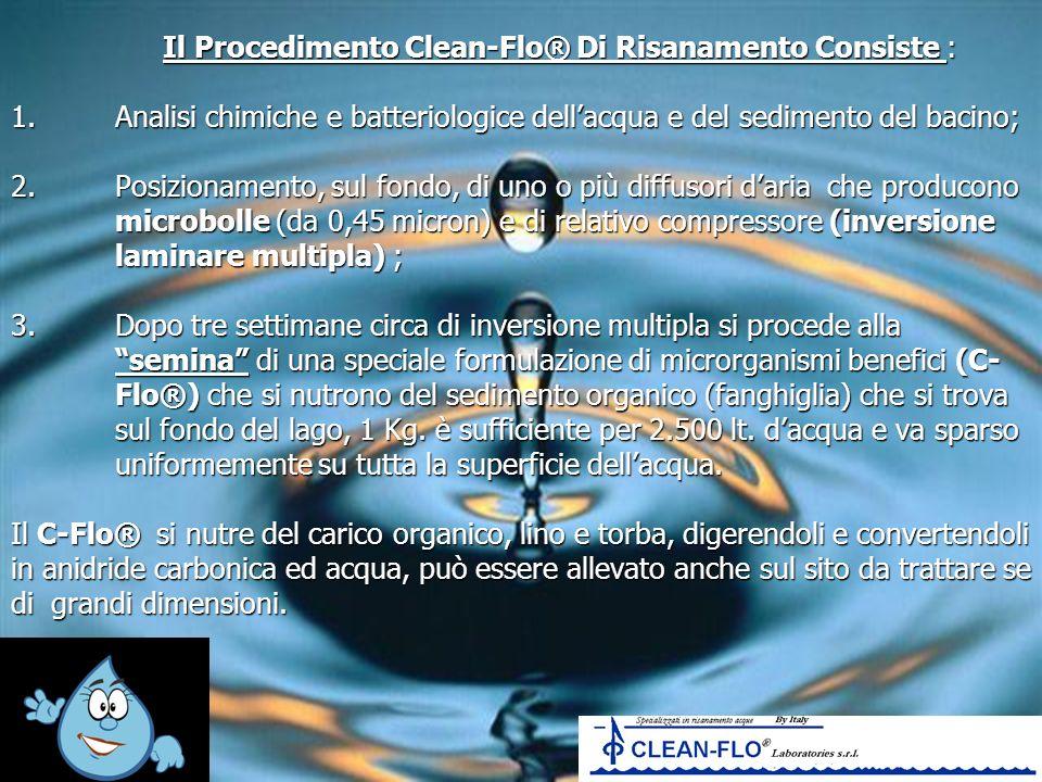 Il Procedimento Clean-Flo® Di Risanamento Consiste : 1
