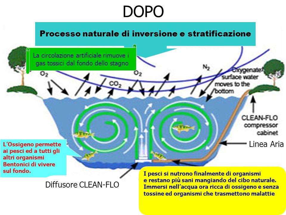 DOPO Processo naturale di inversione e stratificazione Linea Aria