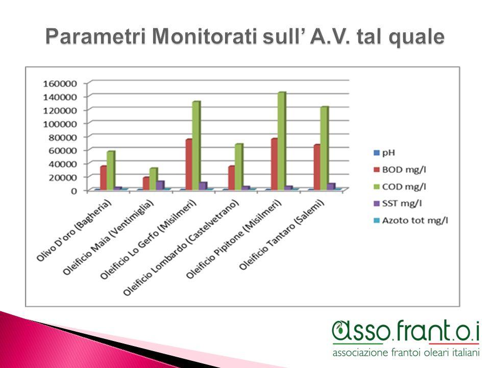 Parametri Monitorati sull' A.V. tal quale