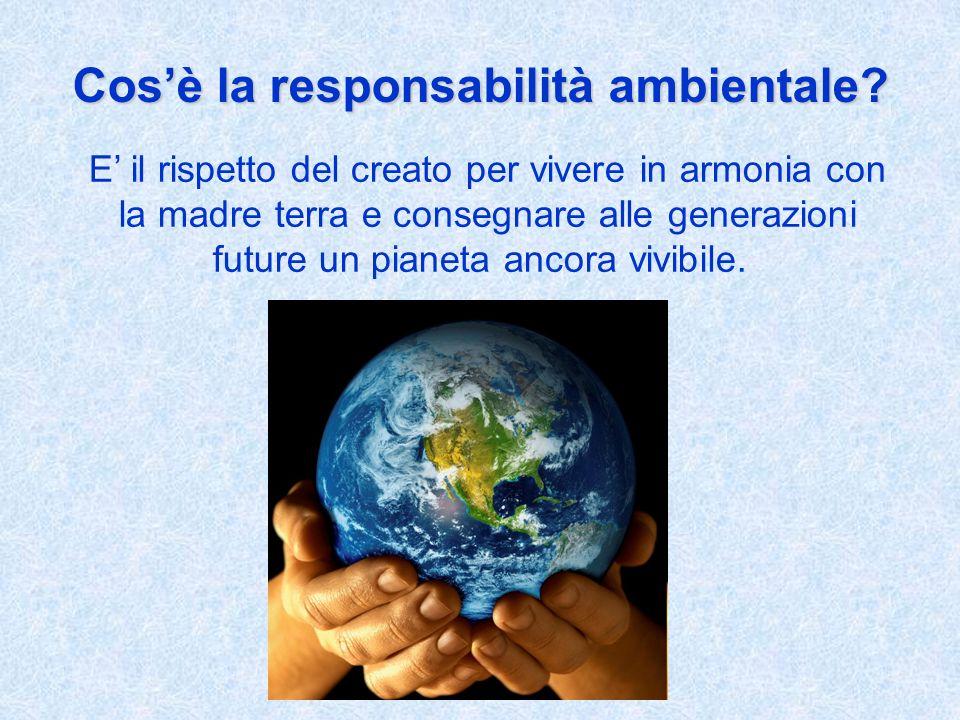 Cos'è la responsabilità ambientale