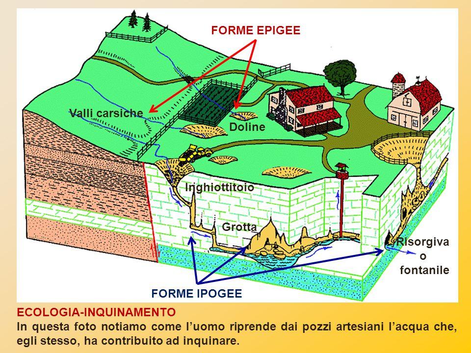 FORME EPIGEE Valli carsiche. Doline. Inghiottitoio. Grotta. Risorgiva. o. fontanile. FORME IPOGEE.