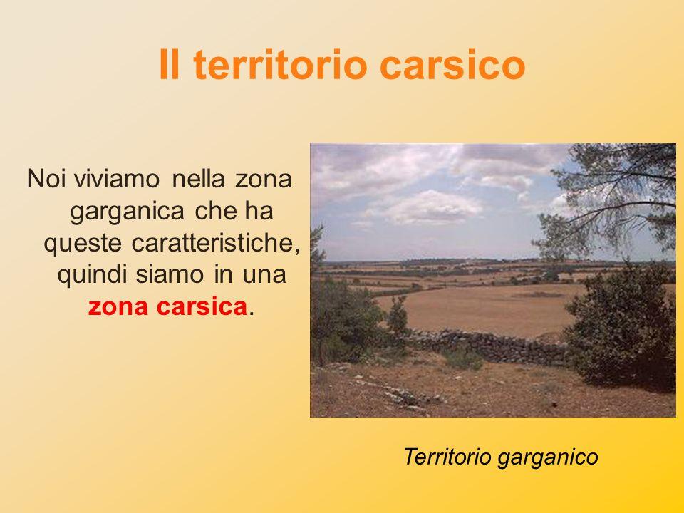 Il territorio carsico Noi viviamo nella zona garganica che ha queste caratteristiche, quindi siamo in una zona carsica.