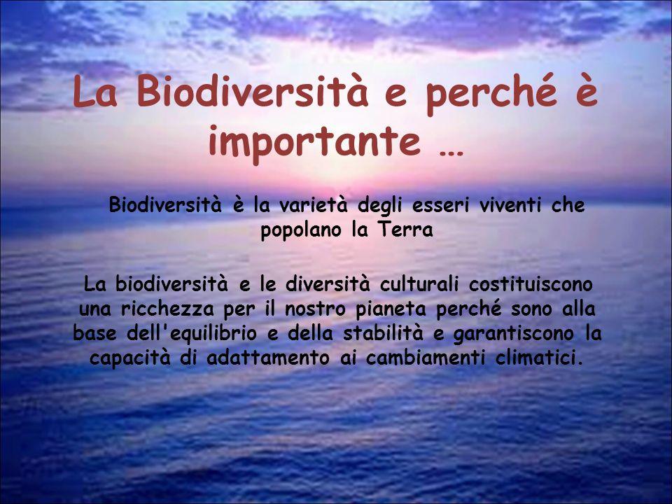 La Biodiversità e perché è importante …