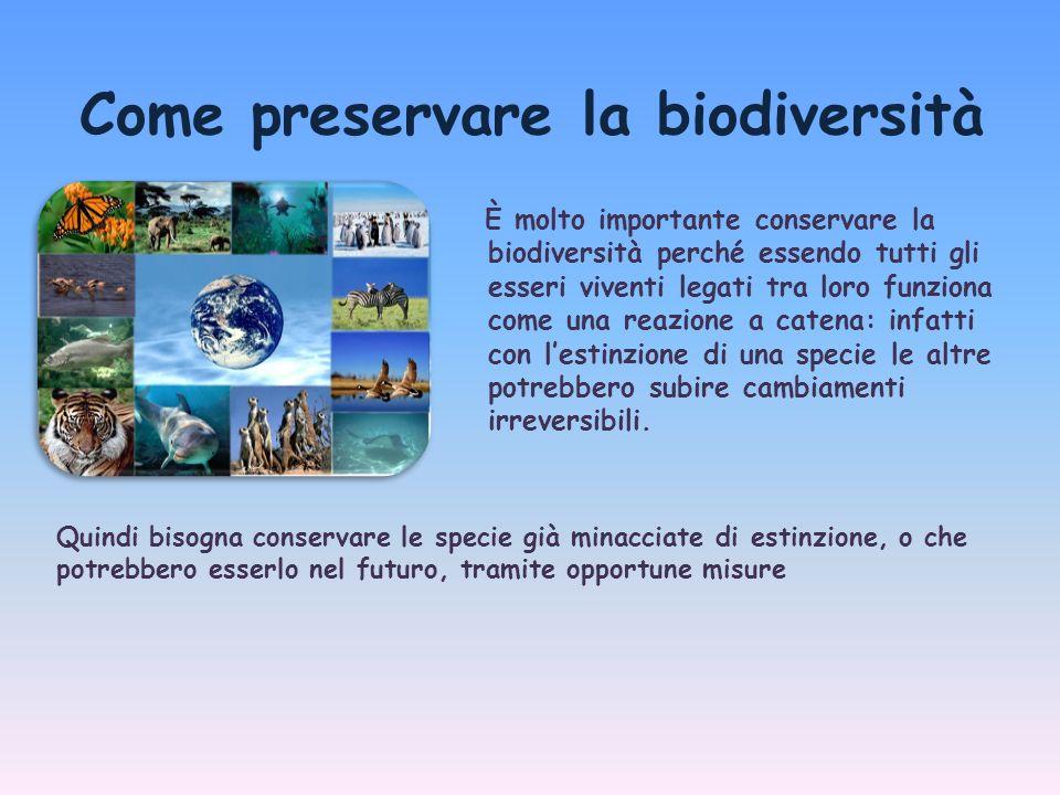 Come preservare la biodiversità