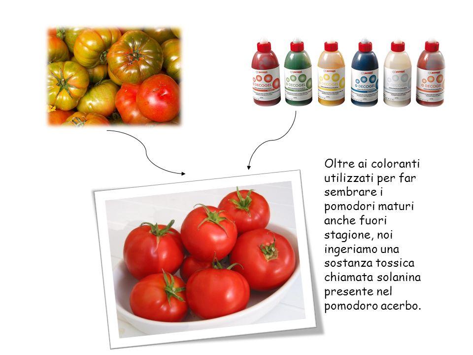Oltre ai coloranti utilizzati per far sembrare i pomodori maturi anche fuori stagione, noi ingeriamo una sostanza tossica chiamata solanina presente nel pomodoro acerbo.
