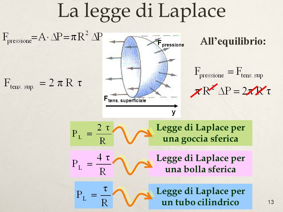 La legge di Laplace All'equilibrio: