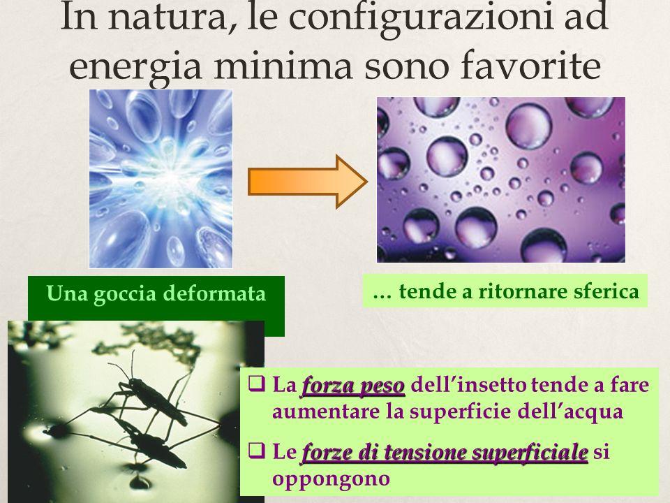 In natura, le configurazioni ad energia minima sono favorite