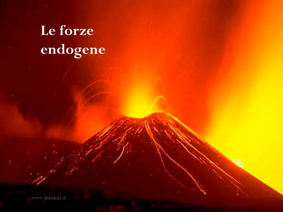 Le forze endogene www.didadada.it