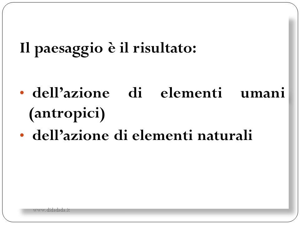 Il paesaggio è il risultato: dell'azione di elementi umani (antropici)
