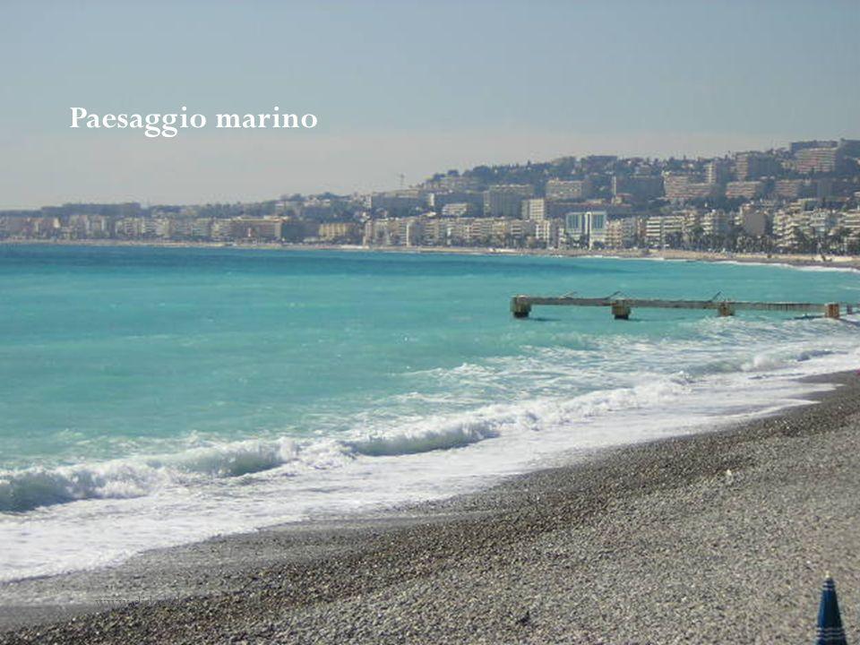 Paesaggio marino www.didadada.it