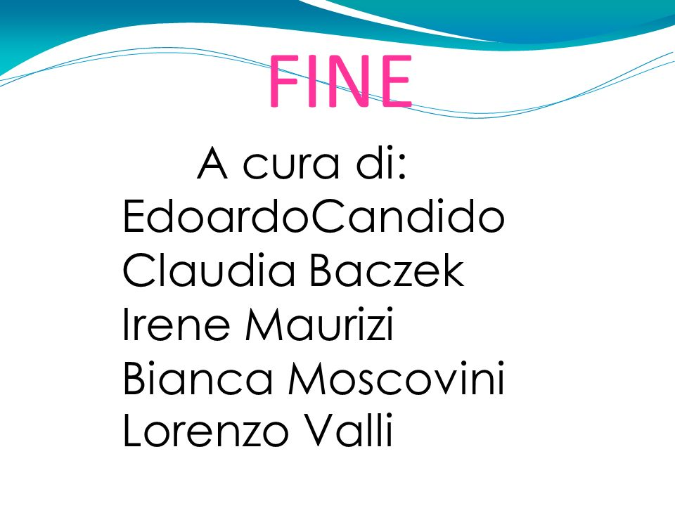 1313 FINE A cura di: EdoardoCandido Claudia Baczek Irene Maurizi Bianca Moscovini Lorenzo Valli