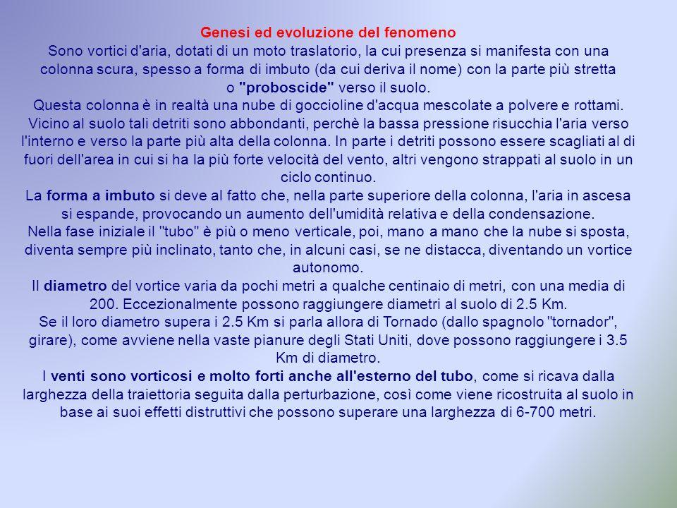 Genesi ed evoluzione del fenomeno