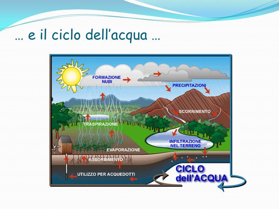 … e il ciclo dell'acqua …