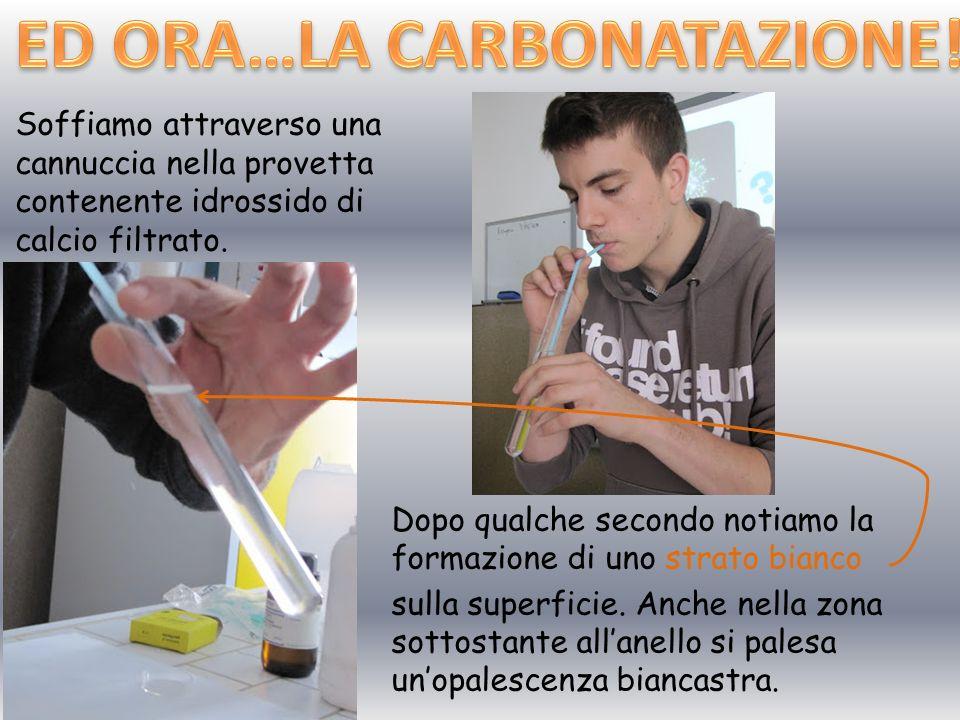 ED ORA…LA CARBONATAZIONE!