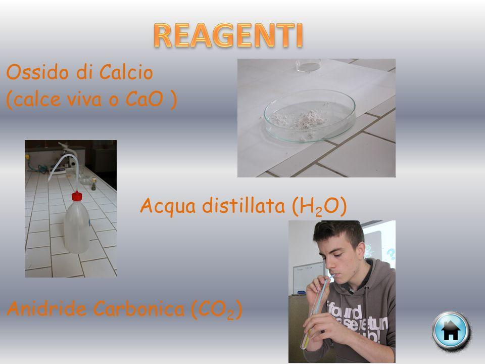 REAGENTI Ossido di Calcio (calce viva o CaO ) Acqua distillata (H2O)