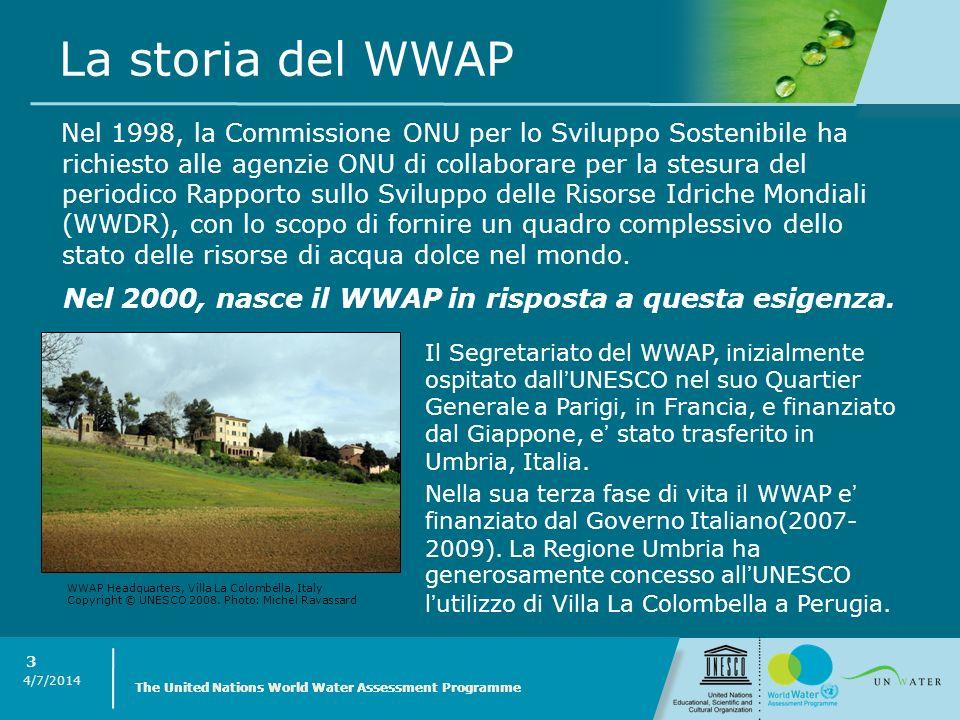 La storia del WWAP