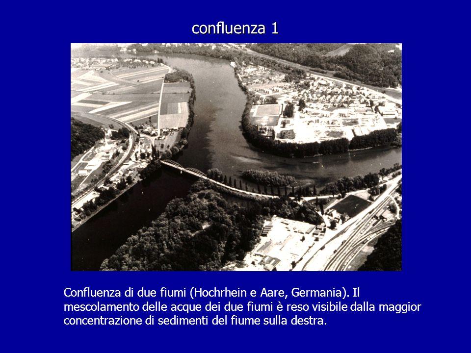 confluenza 1