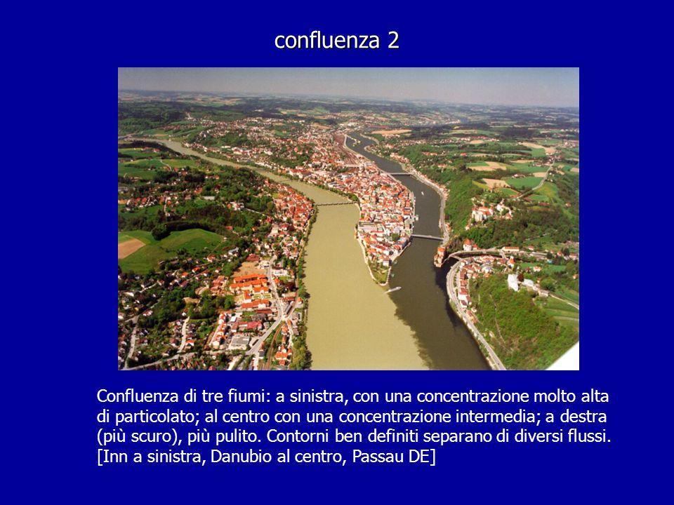 confluenza 2