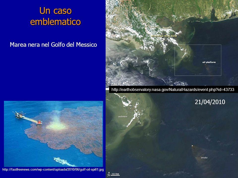 Un caso emblematico Marea nera nel Golfo del Messico 21/04/2010