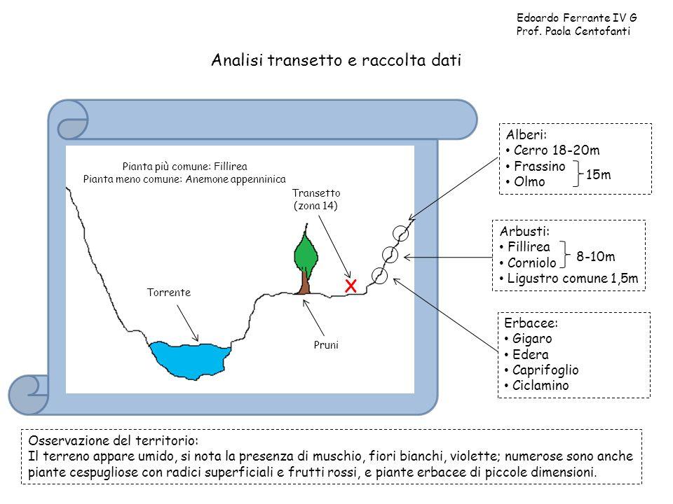 Analisi transetto e raccolta dati