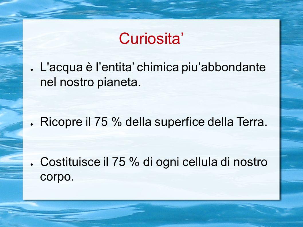 Curiosita' L acqua è l'entita' chimica piu'abbondante nel nostro pianeta. Ricopre il 75 % della superfice della Terra.