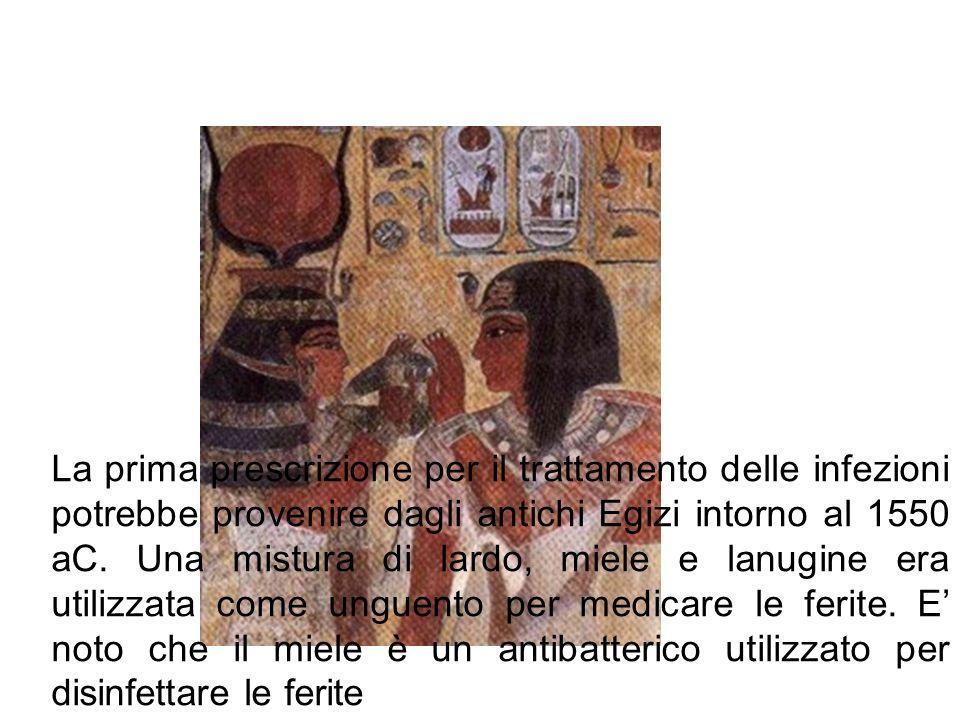 La prima prescrizione per il trattamento delle infezioni potrebbe provenire dagli antichi Egizi intorno al 1550 aC.
