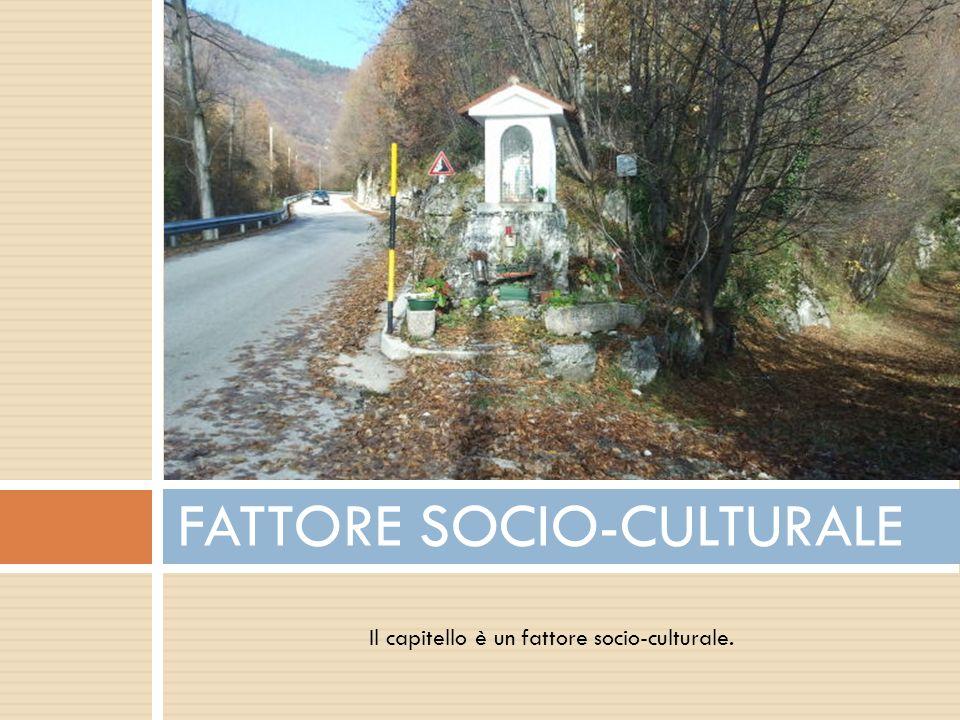 FATTORE SOCIO-CULTURALE
