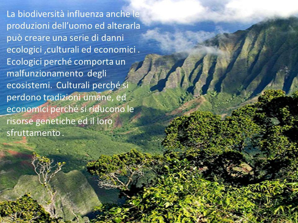 La biodiversità influenza anche le produzioni dell'uomo ed alterarla può creare una serie di danni ecologici ,culturali ed economici .