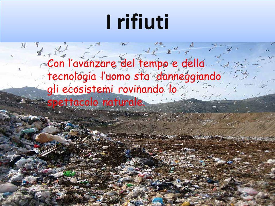 I rifiuti Con l'avanzare del tempo e della tecnologia l'uomo sta danneggiando gli ecosistemi rovinando lo spettacolo naturale.