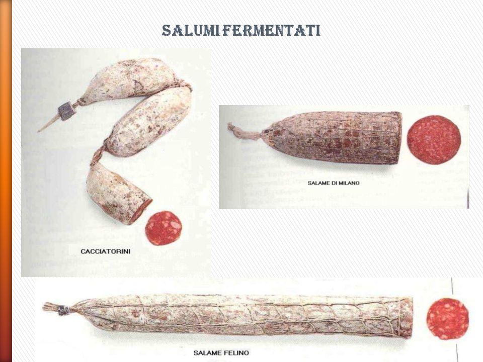 SALUMI FERMENTATI